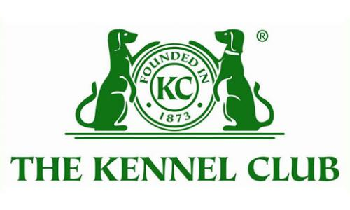Стандарт Кеннел Клуба Великобритан (The Kennel Club)